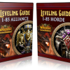 Is It Legal To Use WoW Leveling Guides?